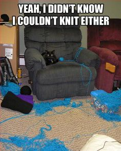 Bet you won't leave yarn out again.