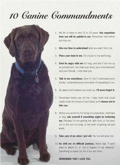 <3 i love my dog