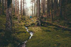 adventur, fruit, outdoor rec, photo, drinks, hiking, hike, norway, henry david thoreau