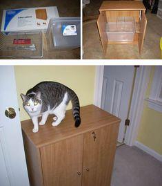 2-Door Cabinet DIY | 27 Useful DIY Solutions For Hiding The Litter Box