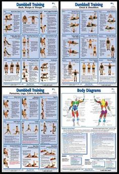 person exercis, dumbell lifting workout, primal fit, dumbell workout, dumbel workout