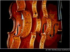 Details of a quartet of decorated Stradivarius violins from the Smithsonian's National Museum of American History. Smithsonian Photo #86-11283 by Eric Long