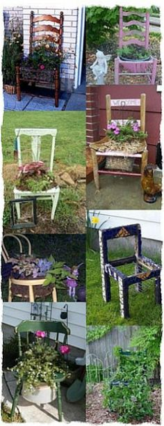 Look at what you can do with an old chair! By member of the Garden Junk Forum at Garden Web.