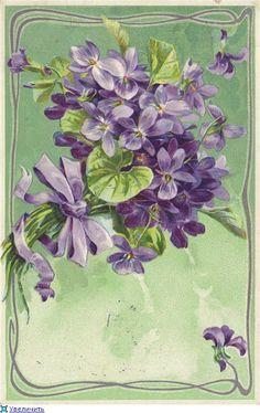 vintage postcards, vintag postcard, flower art, vintag card, violets