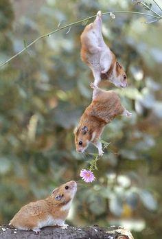 Friends Help Friends.