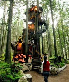 Tree house with an awesome stair case