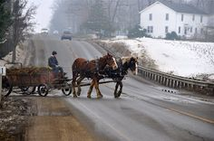 Amish - Lived for 26 years in Amish country.