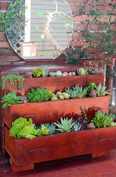 a succulent dresser, could easily do flowers instead