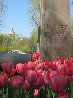 """University of Notre Dame, Spring, 2006. Like the Irish?  Be sure to check out and """"LIKE"""" my Facebook Page https://www.facebook.com/HereComestheIrish  Please be sure to upload and share any personal pictures of your Notre Dame experience with your fellow Irish fans!"""