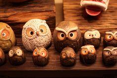 Owls, owls, owls.