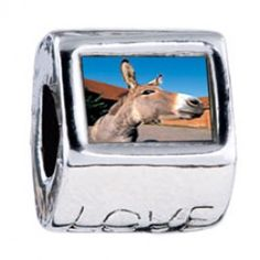 Brown Donkey Photo Love Charms  Fit pandora,trollbeads,chamilia,biagi,soufeel and any customized bracelet/necklaces. #Jewelry #Fashion #Silver# handcraft #DIY #Accessory