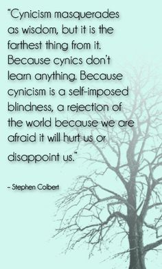 cynicism masquerades as wisdom, but it is the farthest thing from it. because cynics don't learn anything. because cynicism is a self-imposed blindness, a rejection of the world because we are afraid it will hurt us or disappoint us. Stephen Colbert