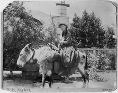 "Future First Lady Lou Henry posing on a burro at Acton, California, 8/22/1891 (Hoover Presidential Library)  Lou Henry Hoover was a scientist, polyglot, author, Girl Scout supporter, and world traveler. She mixed  smarts, practicality, and adventure. Apparently Herbert Hoover was charmed ""by her whimsical mind, her blue eyes and a broad grinnish smile."""