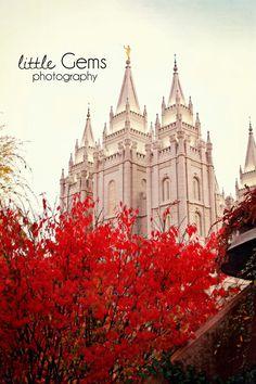 Salt Lake City Temple Fine Art Print