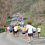 13.1+Reasons+to+Run+a+Half+Marathon