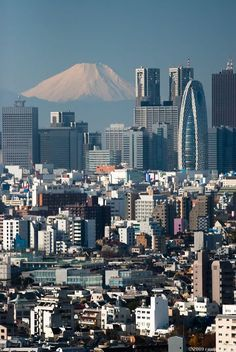 ~Tokyo & Mount Fuji~