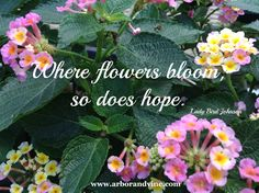Where flowers bloom, so does hope. Lady Bird Johnson