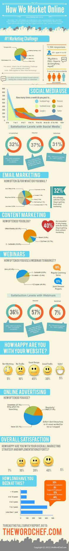 "Solopreneurs-Online-Marketing-Survey-2012 Infographic ""How We Market Online: What Works, What Doesn't"""