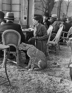 Woman sitting with her pet cheetah having tea at a Bois de Boulogne cafe, Paris, 1936.