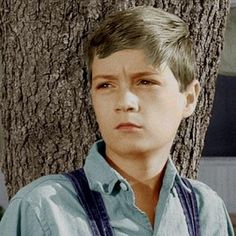 "Phillip Alford, 1962 (1948-living).  American actor best known for his role as Jem Finch in the 1962 film ""To Kill a Mockingbird."" He was active in Hollywood from 1962 to 1972. He is currently a successful businessman in Mississippi."