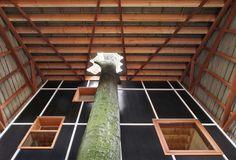 House Bernheimbeuk / architecten de vylder vinck taillieu