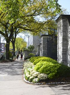 10/7/14 -- The Allen Street Gates, beside Hammond Building and the bus stops, overlook the intersection of College and Allen Street, at the center of the Town and Gown areas of State College and University Park.