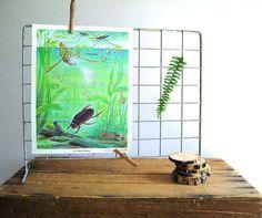 Cool decor idea charts, vintage school, schools, nature, vignett, chart 1400, science posters, poster wall, school scienc