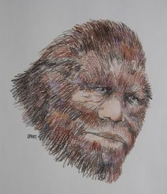 North American Bigfoot Search