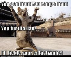 Shakespeare Insults on Pinterest | Shakespeare Insults, Cat and Life  Animal Shakespeare Memes