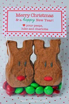 cute christmas gift idea for classmates
