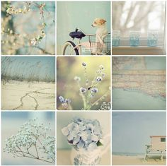 what a beautiful collection of photos...