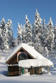 Cabin in the Snow - Durango, Colorado! My heart will always be in Durango! Love!!
