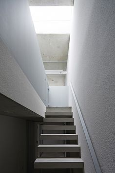 Oggi / Makoto Yamaguchi Design