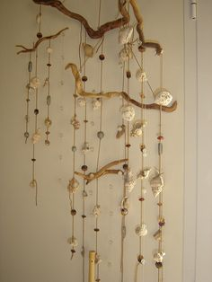Shell and driftwood mobile.