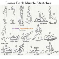 Stretches For Lower Back Pain: Stretches For Lower Back Pain Youtube 3