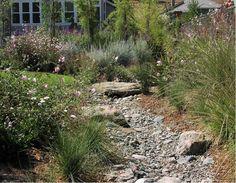 rain garden - rock bed planting layers