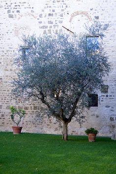 Monastery in Tuscany
