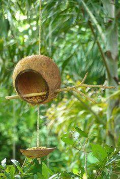 Comedouro para passarinhos com casca de coco seco