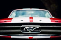 Shelby Mustang |