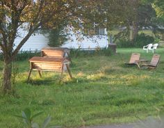 backyard apiary