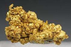 Gold Specimens June 14, 2009----Click on ad at www.goldshopper.org for free gold or silver! #gold bullion #Bullion #Gold #Silver #Platinum #Palladium #Bullion #GoldCoins #Precious #PreciousMetal #gold nugget #gold nuggets