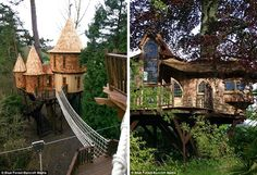 What a tree house!