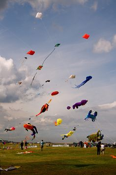 Kite flying competition
