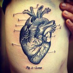 fig. 1- Love