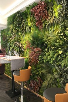 #green wall #vertica