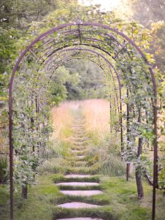 A series of arbor beckons the visitor onwards.