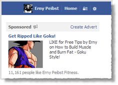 How to Increase your Facebook Likes with a Small Budget: Case Study