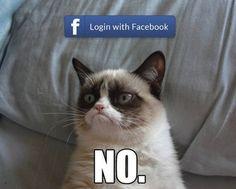 NO #grumpycat