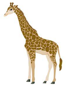 giraffe.jpg (385×480)