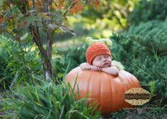 hats, newborn pumpkin, mini sessions, newborn photos, babi